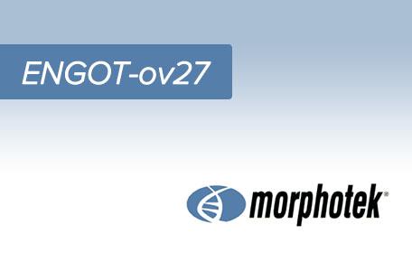 20-morphotek